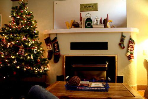 12-2-10 Christmas at Home (10)