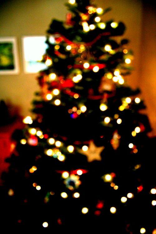 12-2-10 Christmas at Home (16)