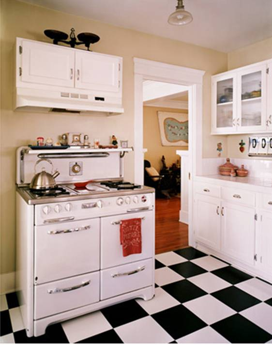 Black,White, and Kitchen All Over - One Rare Bird