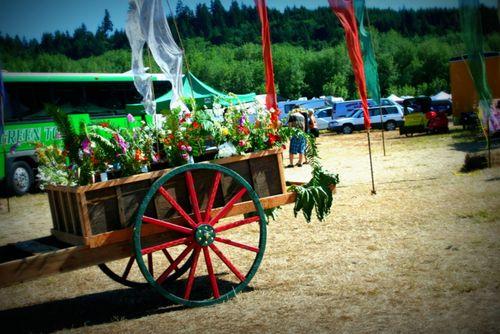 6-15-12 Country Fair (52)